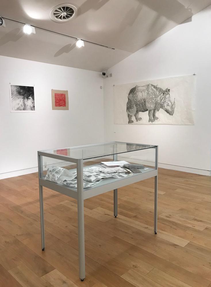Rhinoceros-Domesticus-Installation-view-